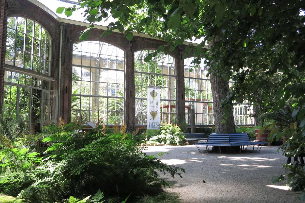 Botanische Tuin Amsterdam : Hortus botanicus amsterdam binnenlocaties voor trouwfoto s
